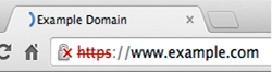 chrome-ssl-insecure