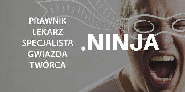 .ninja domena